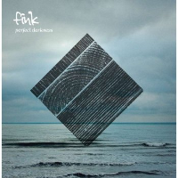 Perfect Darkness - Fink