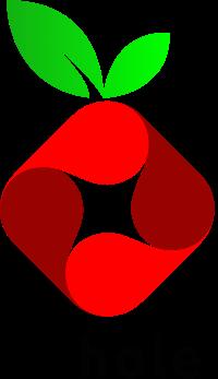 Installation de Pi-Hole sur mon Raspberry Volumio