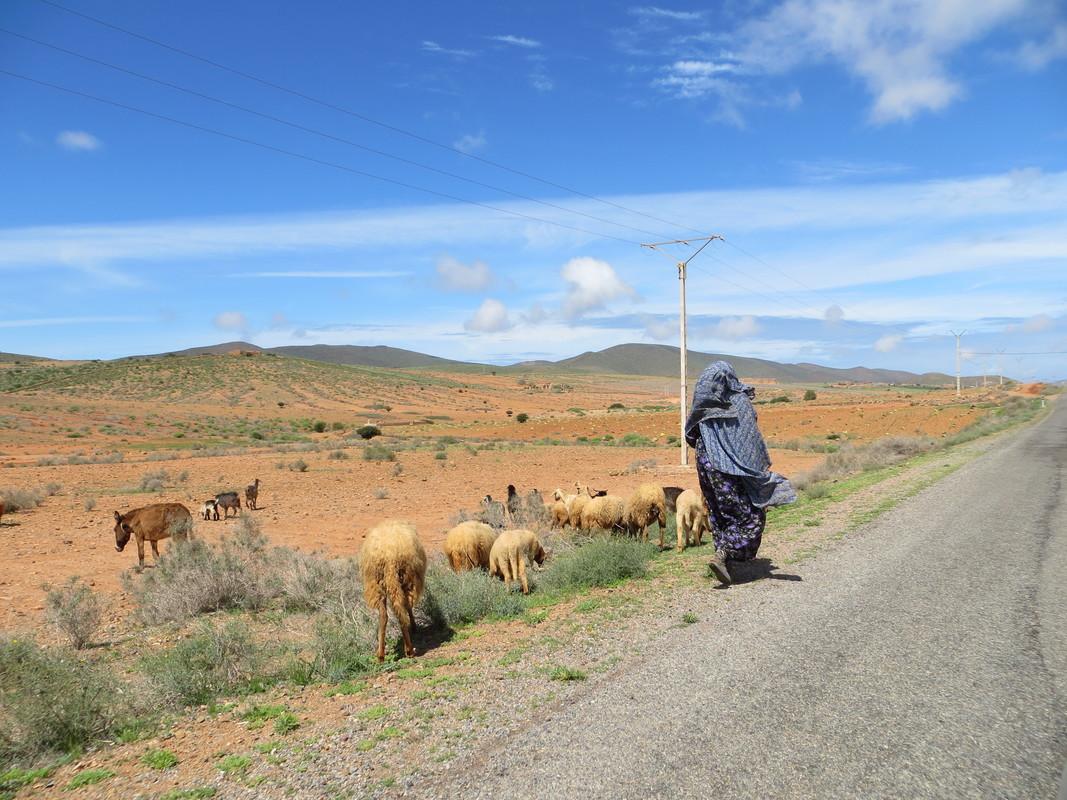 Maroc : les dernières photos